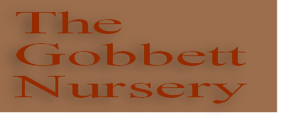 The